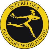 interflora accredited cambridge hamilton florist expressions