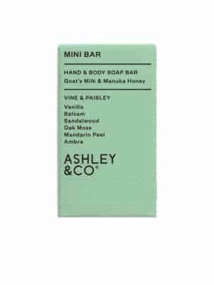 ashley-co-soap-vine-paisley-expressions