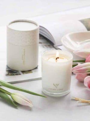 living-light-dream-mini-jar-soy-candles-expressions
