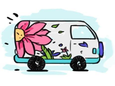 flower-delivery-hamilton-cambridge